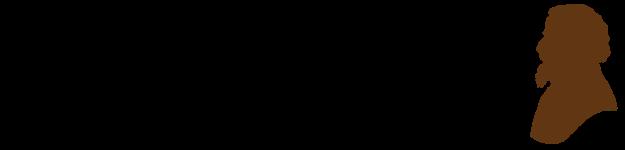 ds-logo